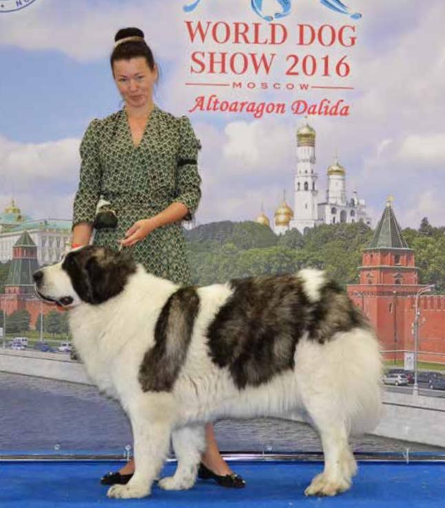 world dog show 2016